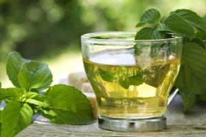 Tomar-té-verde-para-adelgazar
