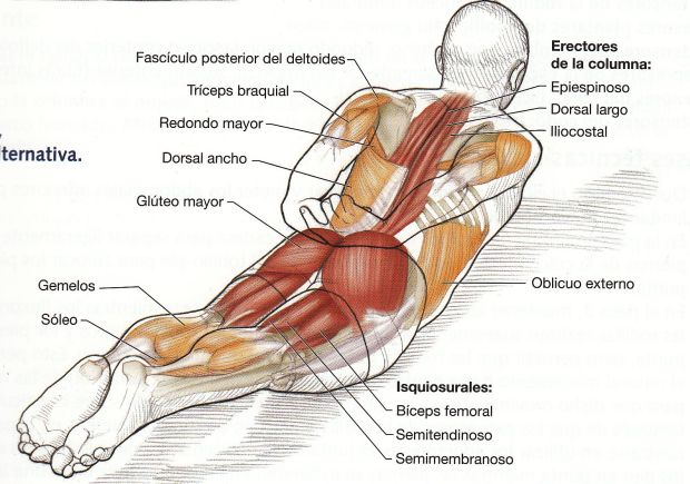 doble  patada gluteo pilates